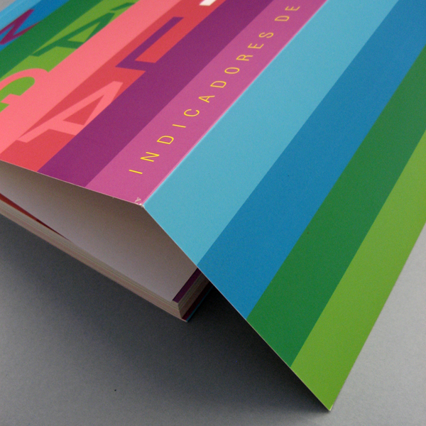 libro_indicadores_omau_9